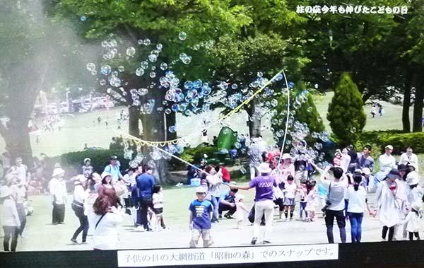 山笑う1-4