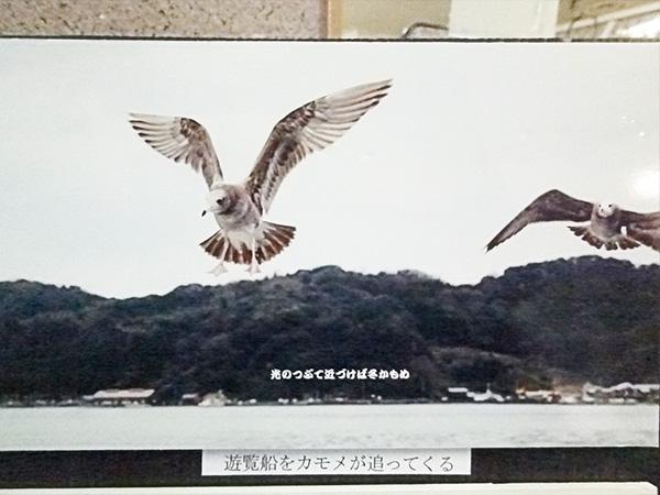 京都府丹後半島2